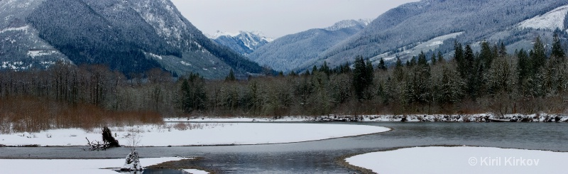 Skagit River Valley-The Home Of The Eagles