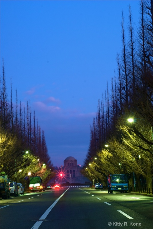 Street in Tokyo at Dawn