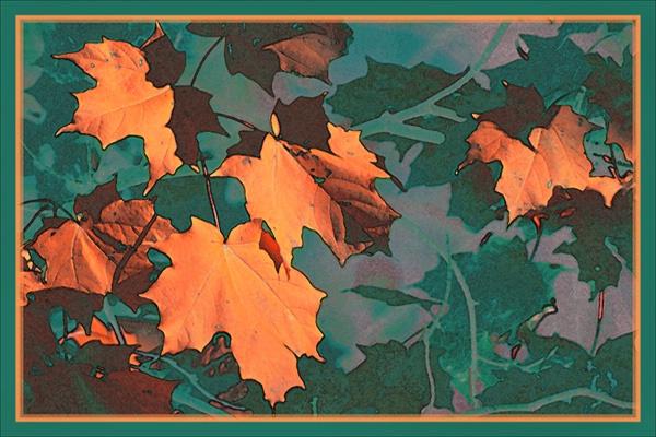 Orange Fall Leaves  card