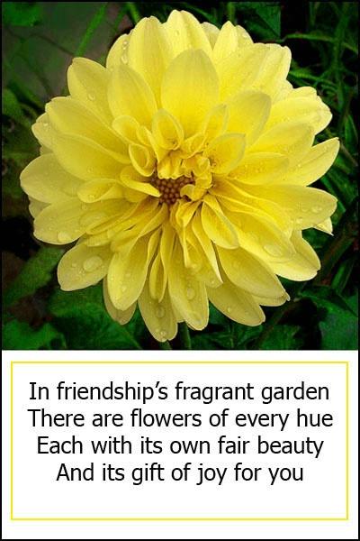 Friendships Garden card