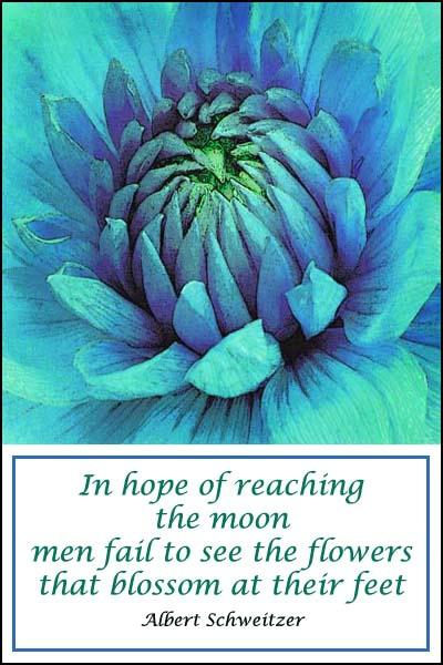 Reach the Moon card
