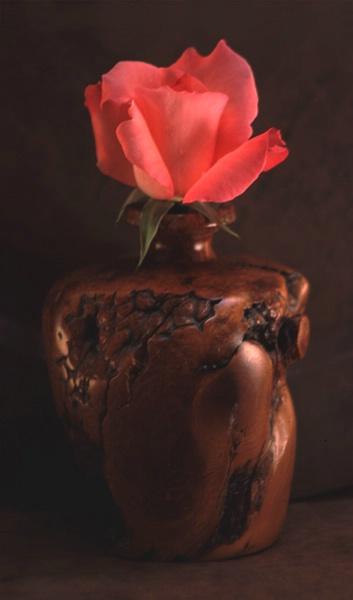 Pink Rose in Wood Vase
