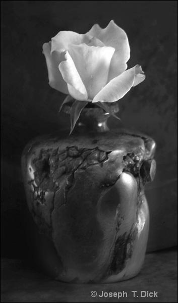 Rose in Wood Vase bw