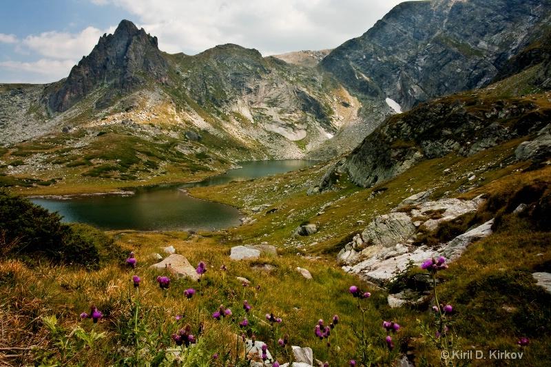 Rila Mountain5(Forest Fairy-Tale)