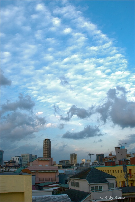 Another Wonderful Sky - From our Roof in Tokyo