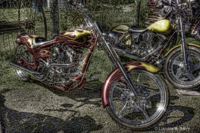 Bike - single III