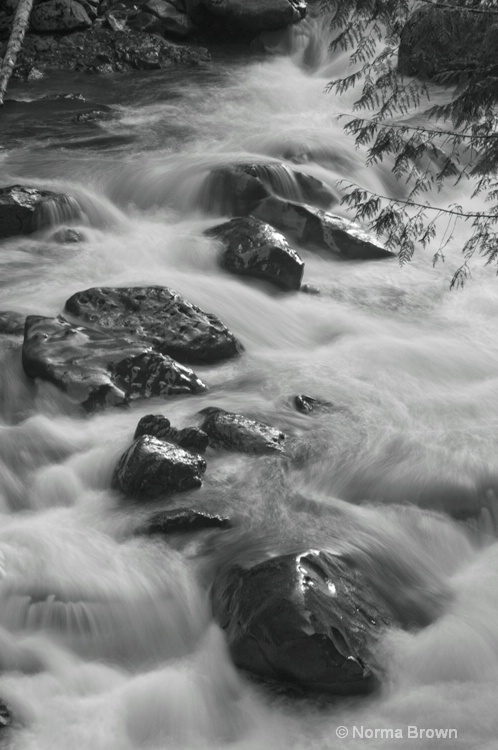 Nooksack River, WA
