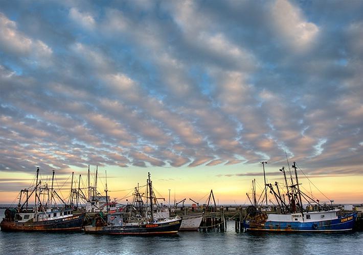 Harbor Sunset View