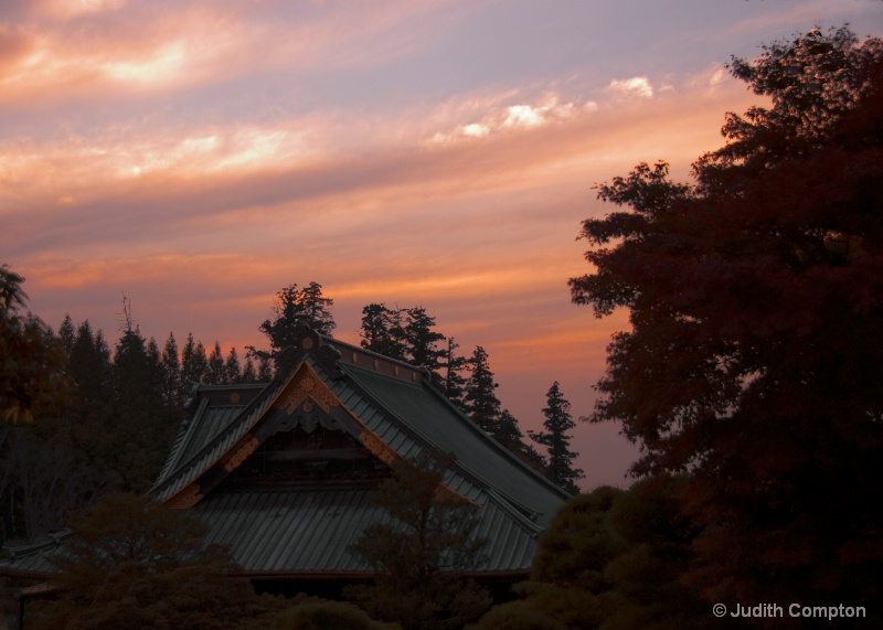 Naritasan at dusk