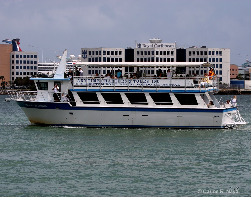 Any Time Charter Tours Bayside