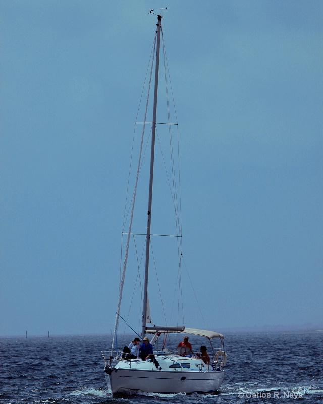 Sailing Takes Me Away..........