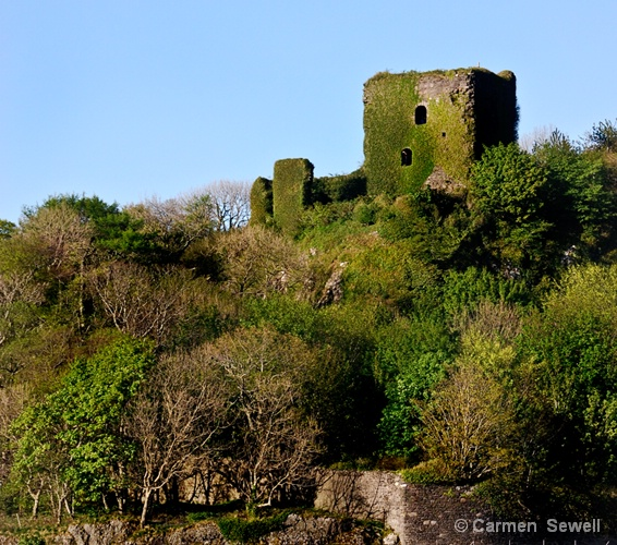 Castle Ruin from Ferry to Isle of Mull