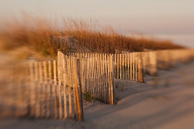 Dune Fence Impression