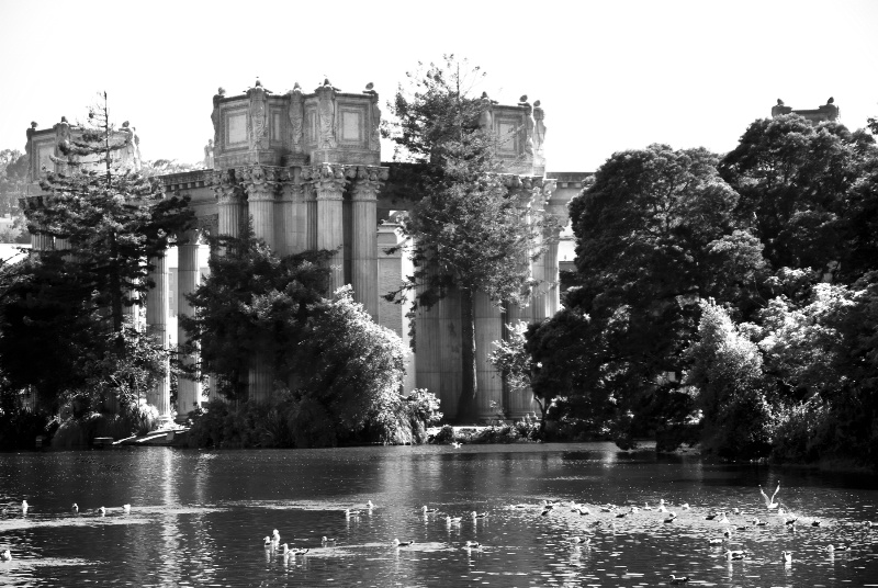 The Palace of Fine Arts in Black & White