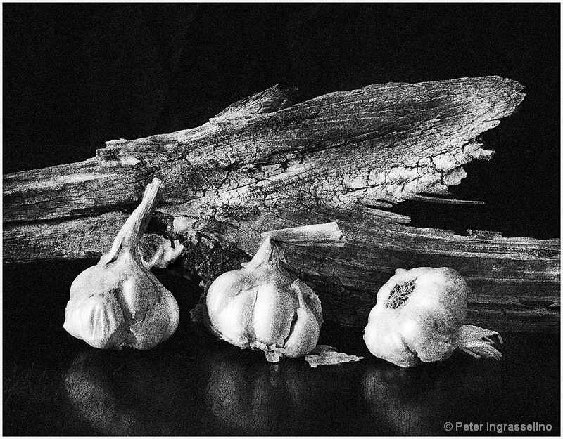 Garlic and Driftwood