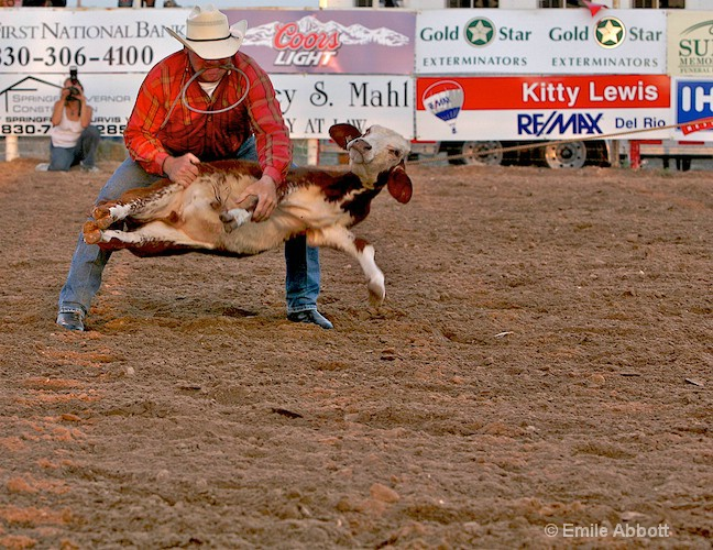 The calf take down