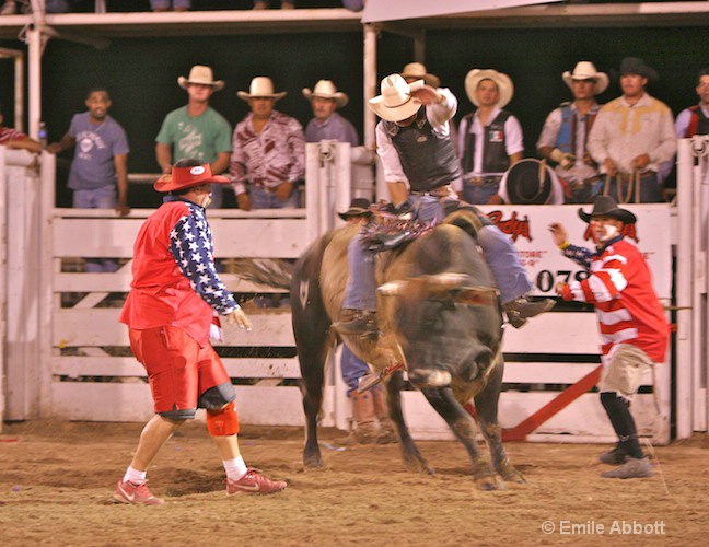 2008 Rodeo Bull Ride