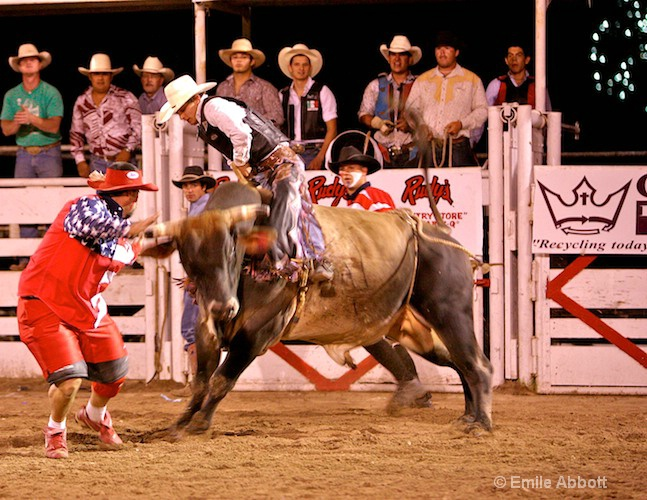 Rodeo Bullfighter/Clown ready to help