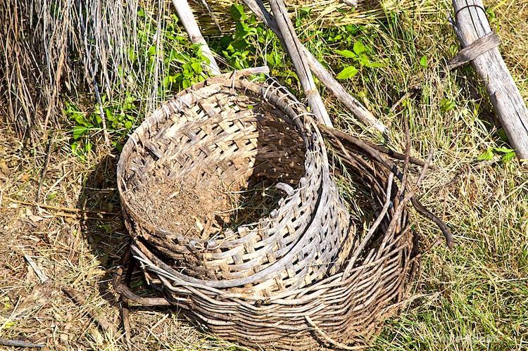 Ancient Basket