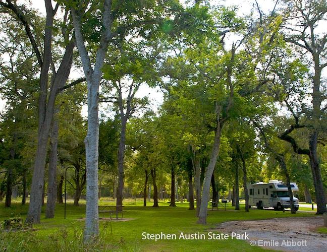 Steven Austin Texas State Park