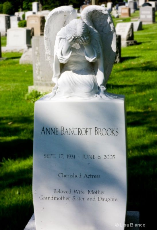 Ann Bancroft Brooks