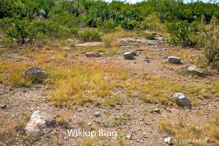 Wikiup  Ring