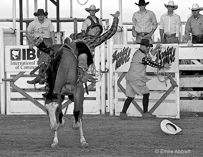 Ride um Cowboy