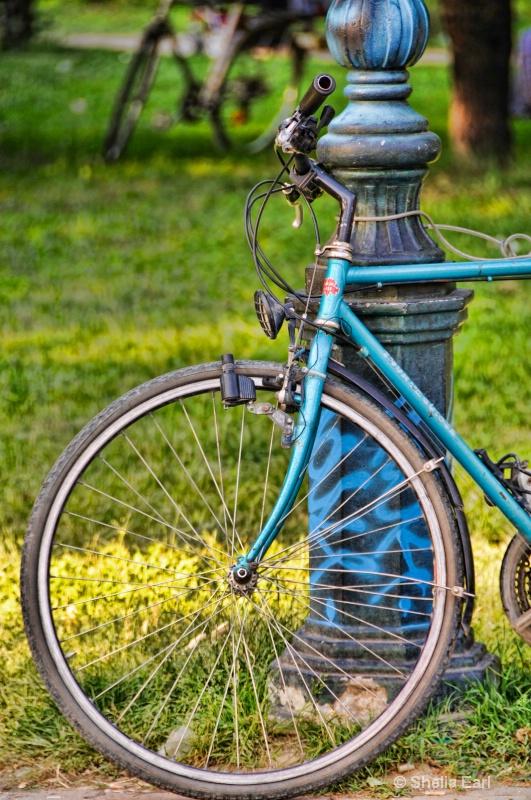 Bicycle in Skopje Park
