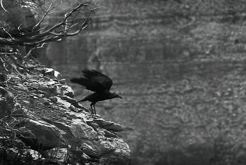 Cliffhanger, Grand Canyon