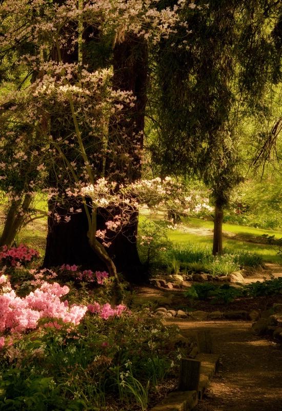 Secret Garden Version 1