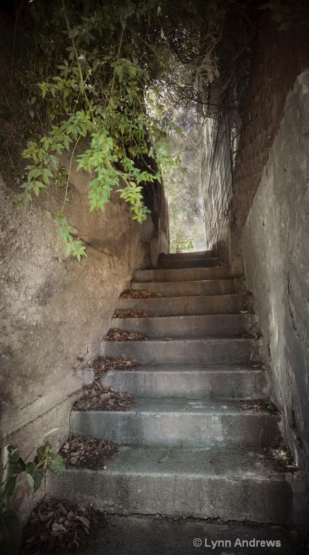 Bisbee Steps