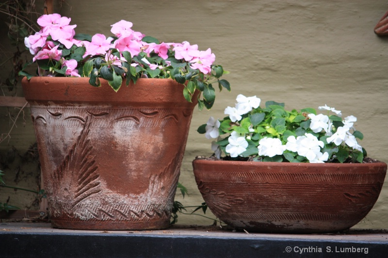 Impatiently Potted. . .