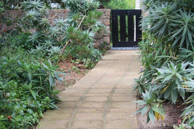 The Garden Gate. . .