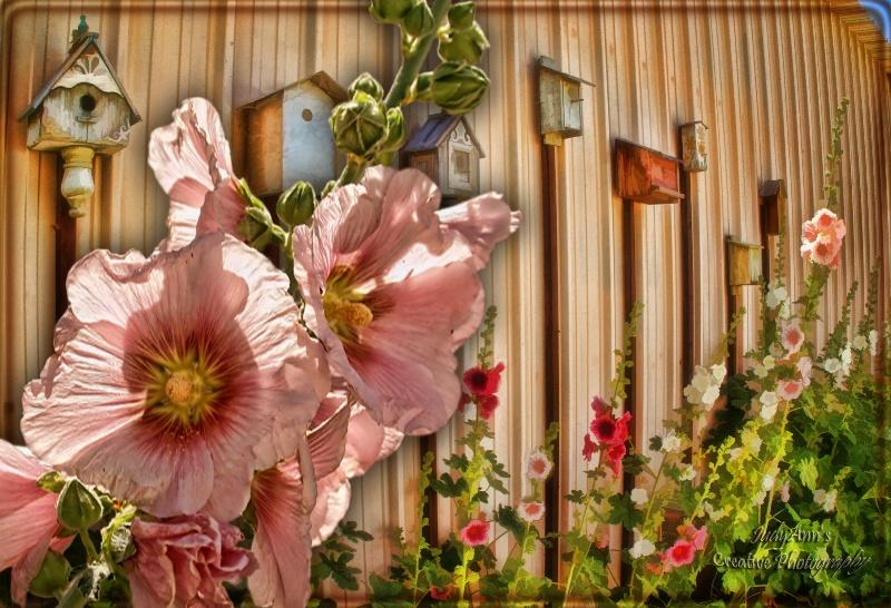 Flowers & Birdhouses