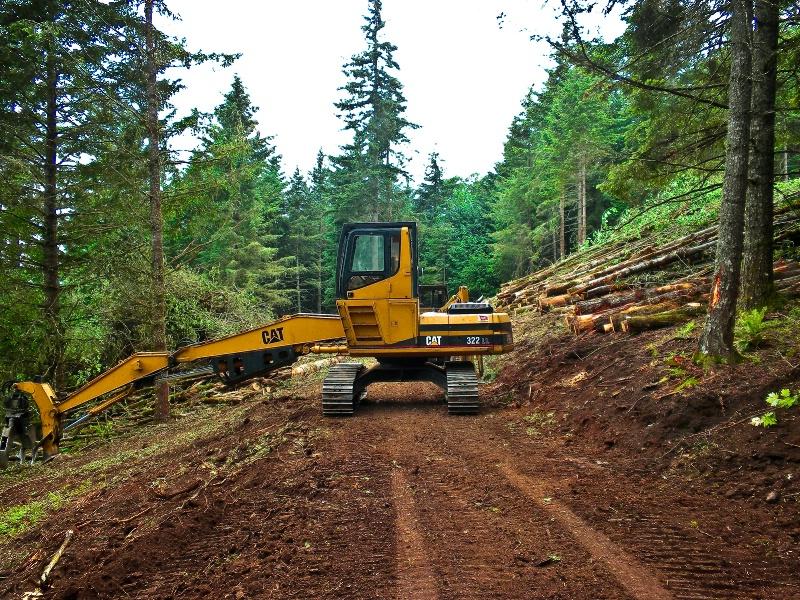 Cat Loader, Logging-Oregon