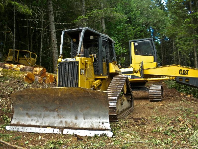 Cat Skidder, Logging-Oregon