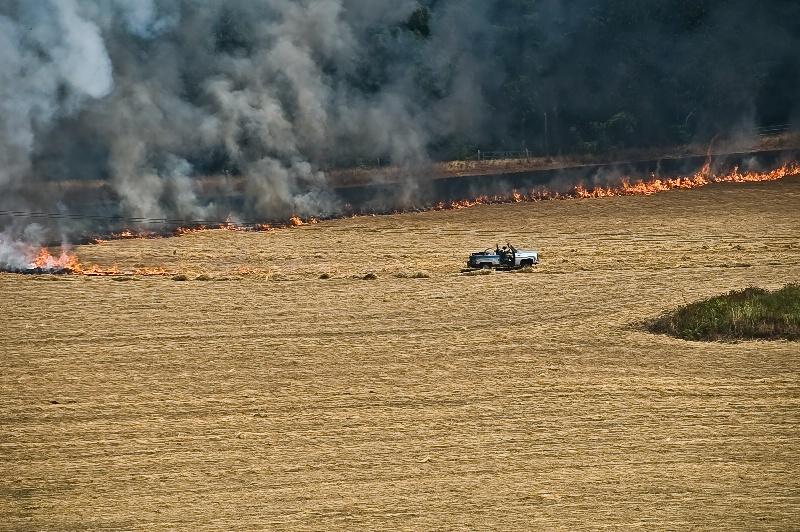 The Fire Starter, Field Burning-Oregon