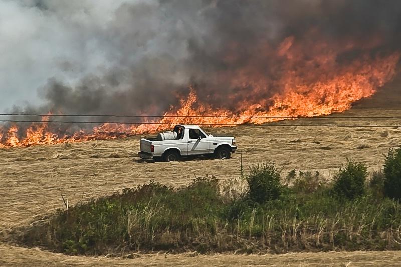 The Watchers, Field Burning Oregon