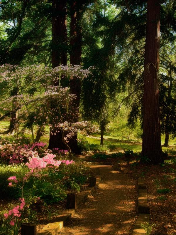 The Secret Garden Version 2