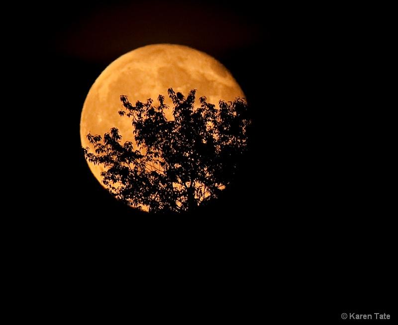 Harvest Moon, Lake Jean, Pa.