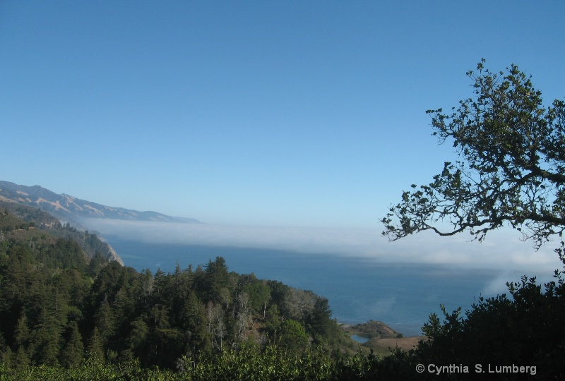 Up in the Clouds in Big Sur