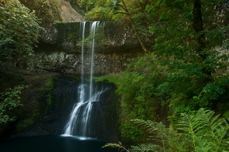 Lower South Falls, Silver Falls SP