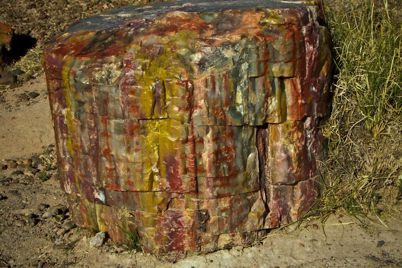 Petrified Wood, Petrified Forest-AZ