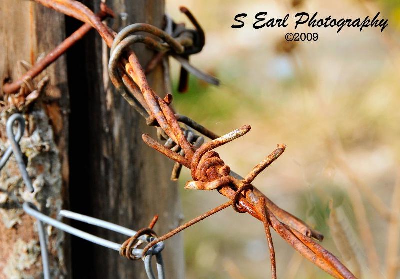 Barbed Wire Fence@@Mavrovo, Macedonia