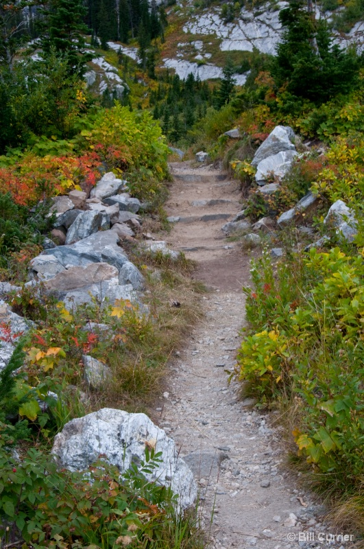Paintbrush Divide Trail  - GTNP