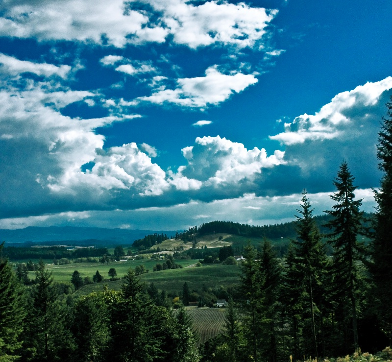 My World, Oregon