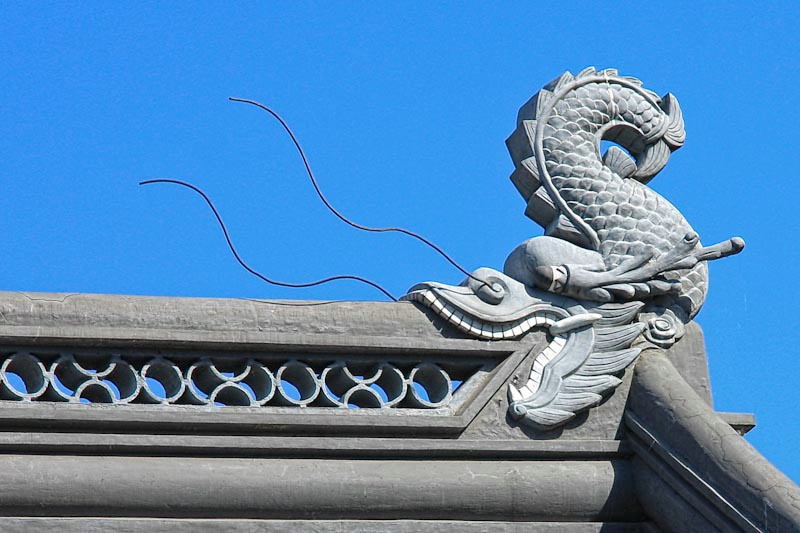 Roof Dragon
