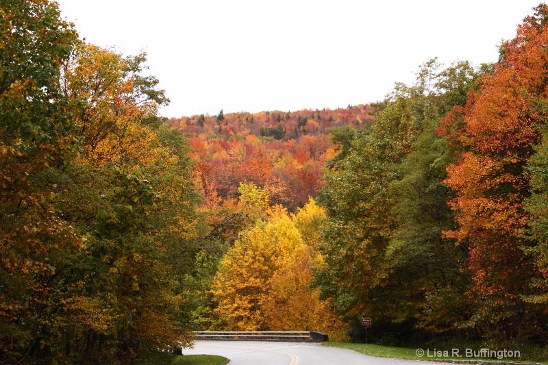 Boone Fork