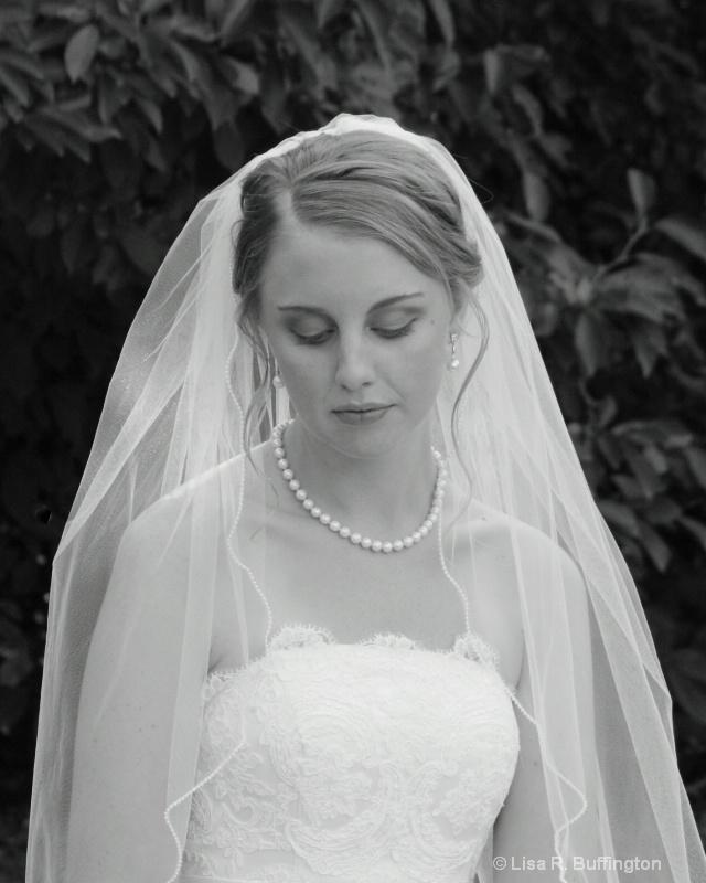 Melissa XII