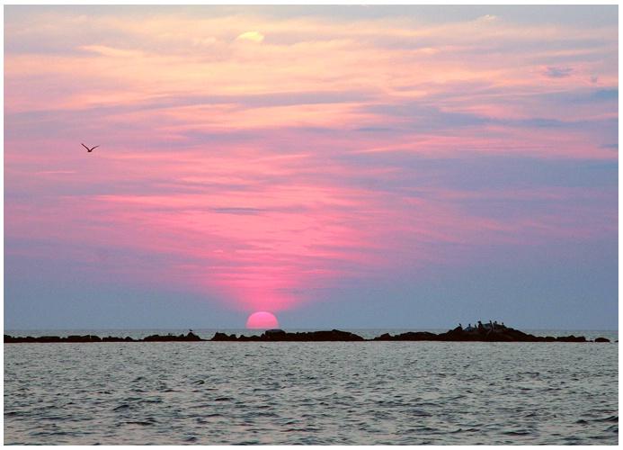Pink Sunset #311